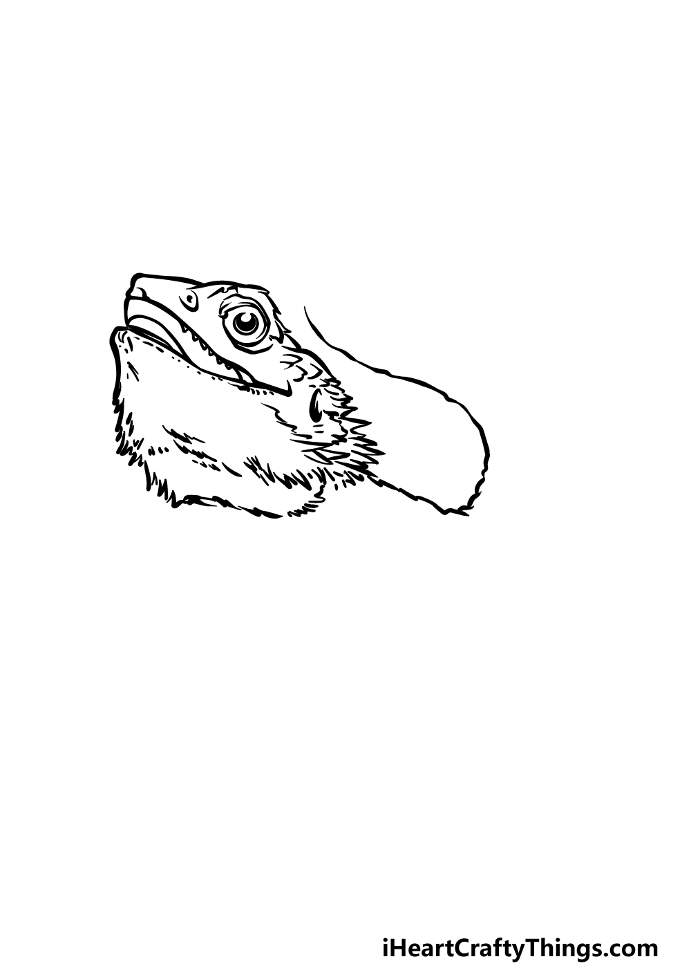 drawing a bearded dragon step 2