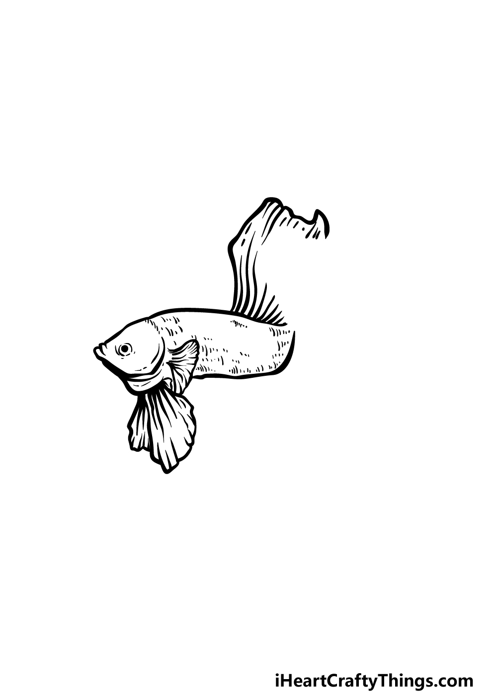 how to draw a Betta Fish step 2