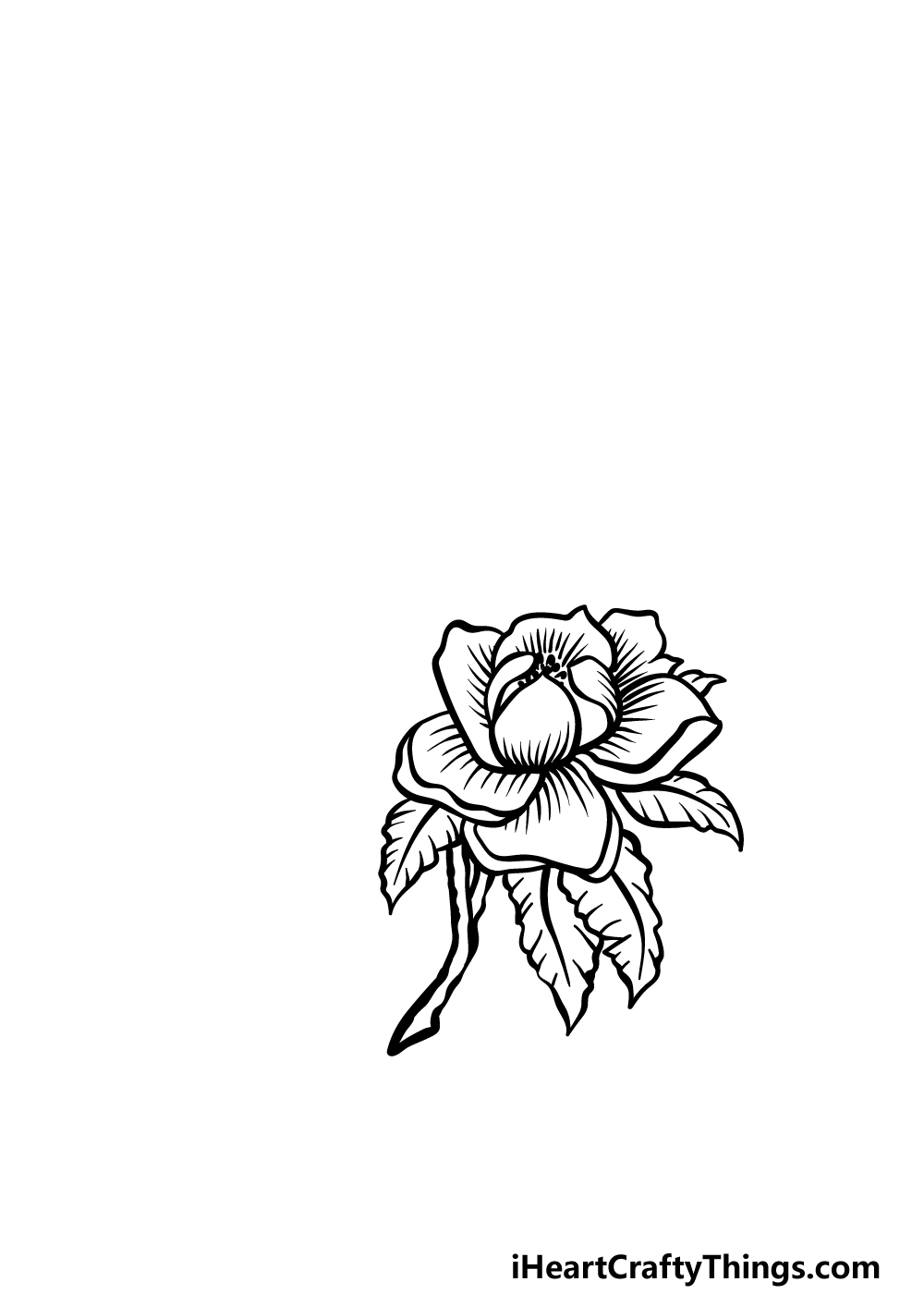 how to draw magnolia flower step 2