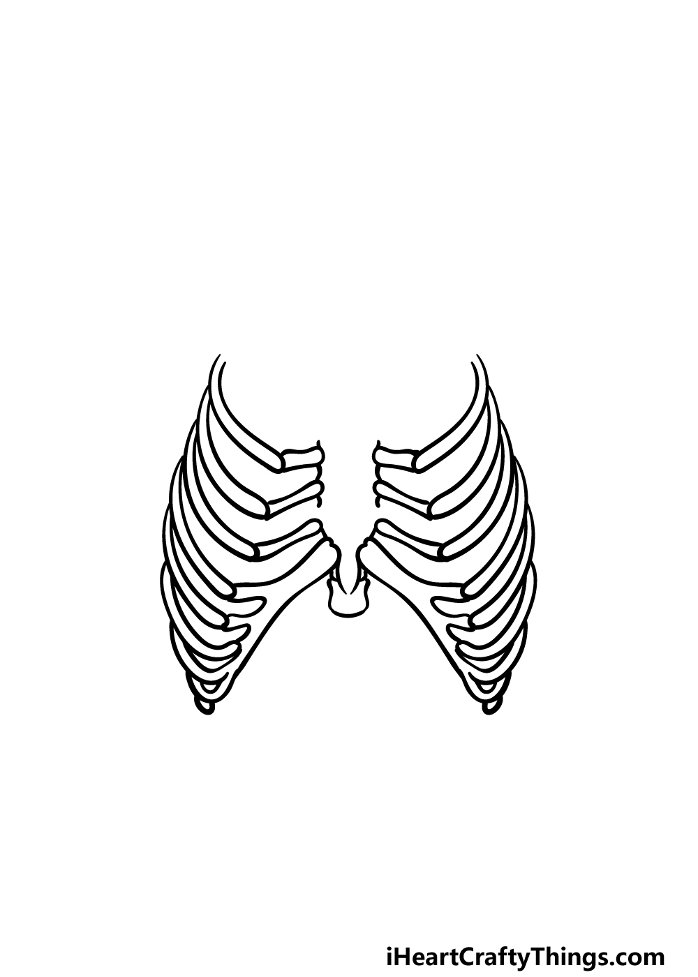 how to draw a rib cage step 3