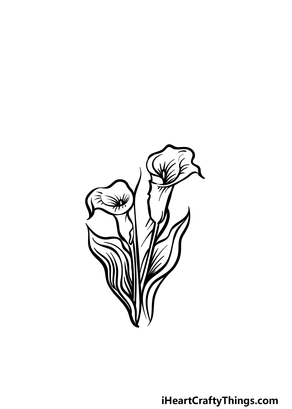 how to draw a Calla Lily step 3