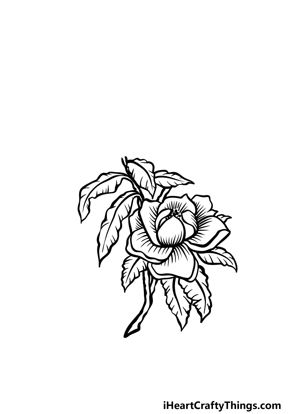 how to draw magnolia flower step 3