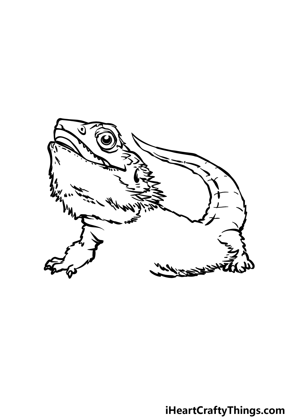 drawing a bearded dragon step 4