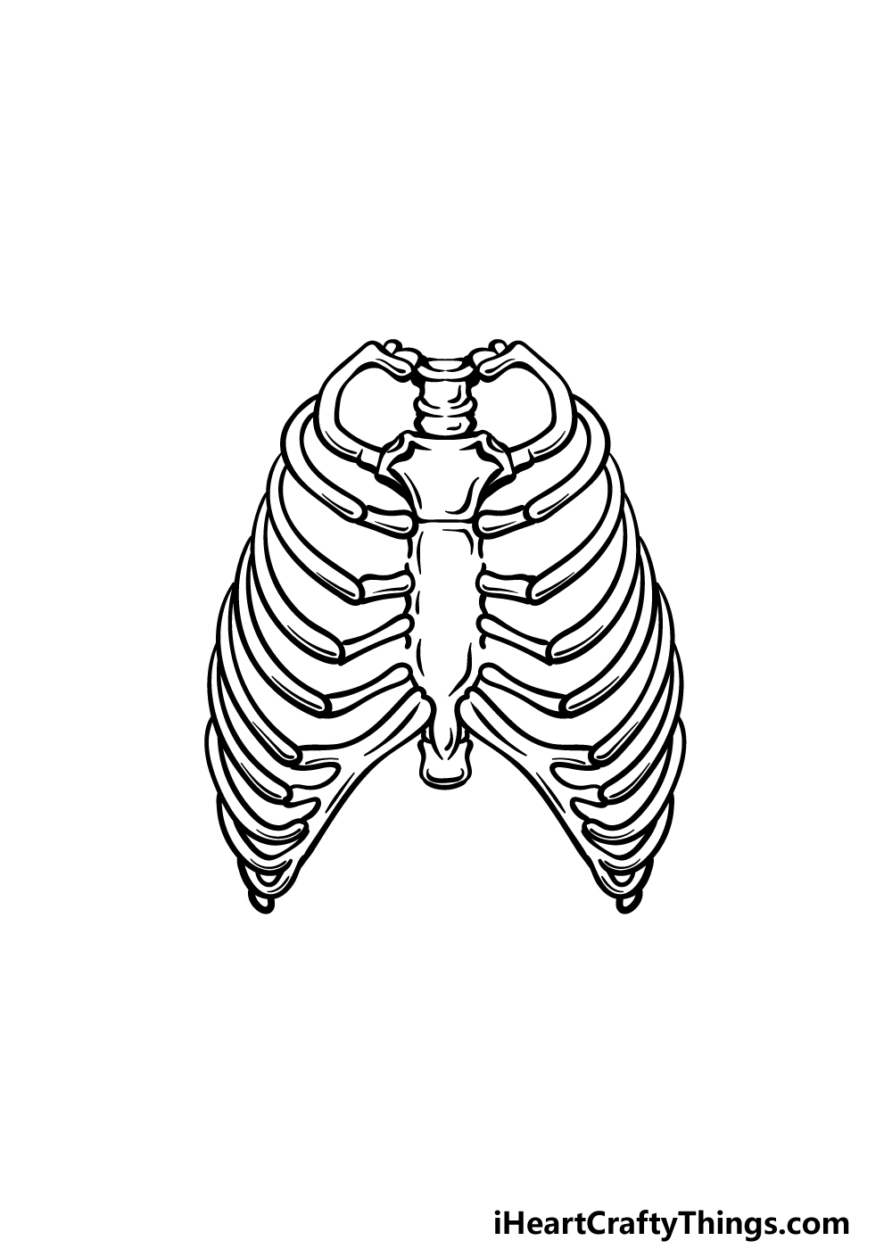 how to draw a rib cage step 4
