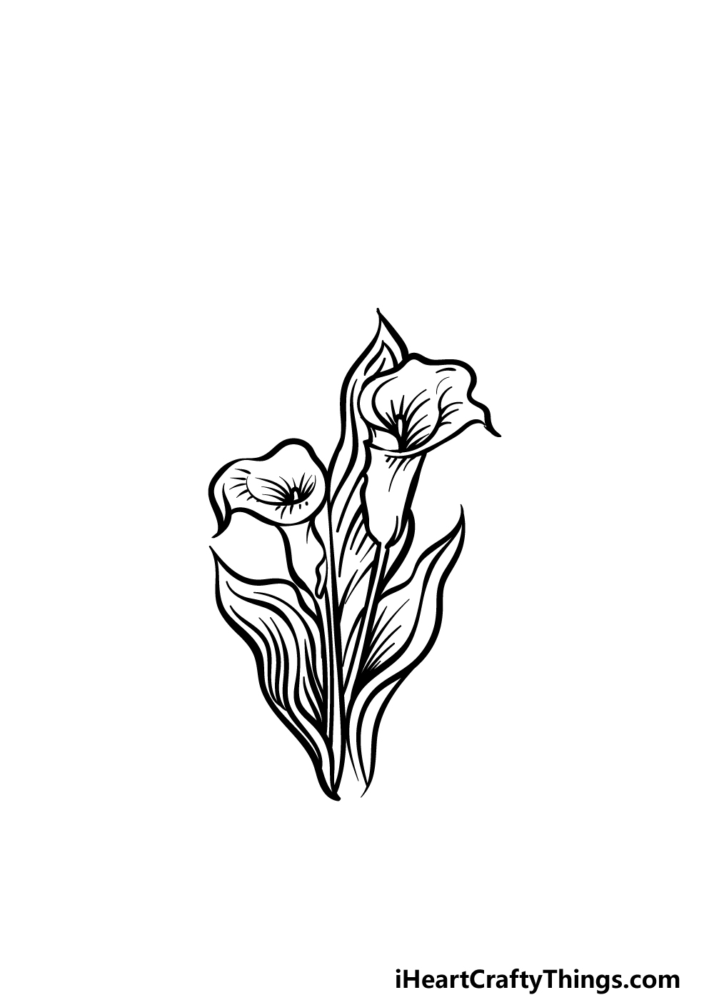 how to draw a Calla Lily step 4