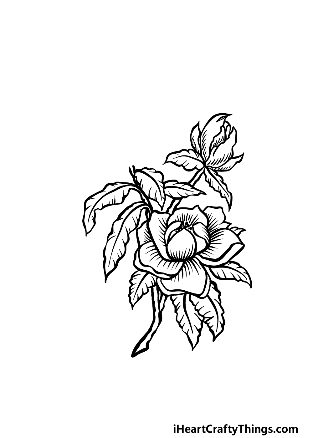 how to draw magnolia flower step 4