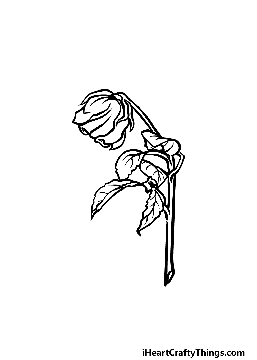 how to draw a dead rose step 5
