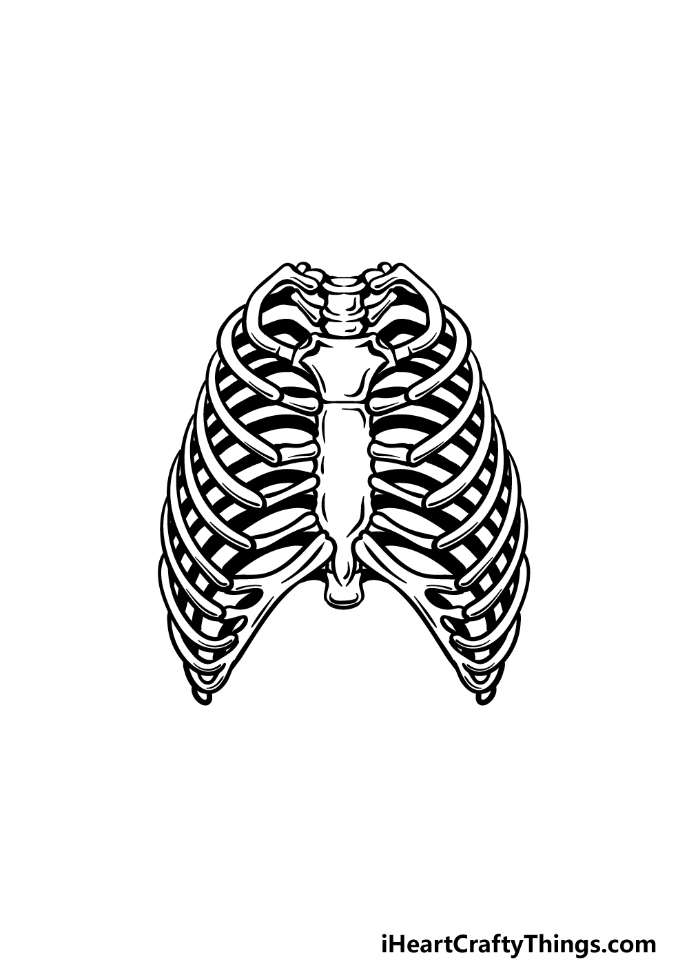 how to draw a rib cage step 5