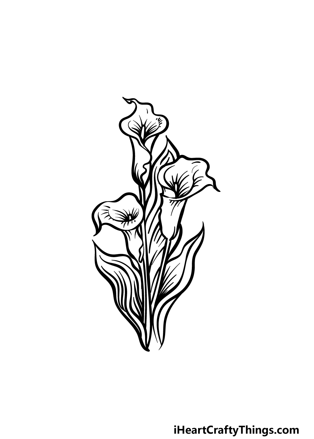 how to draw a Calla Lily step 5