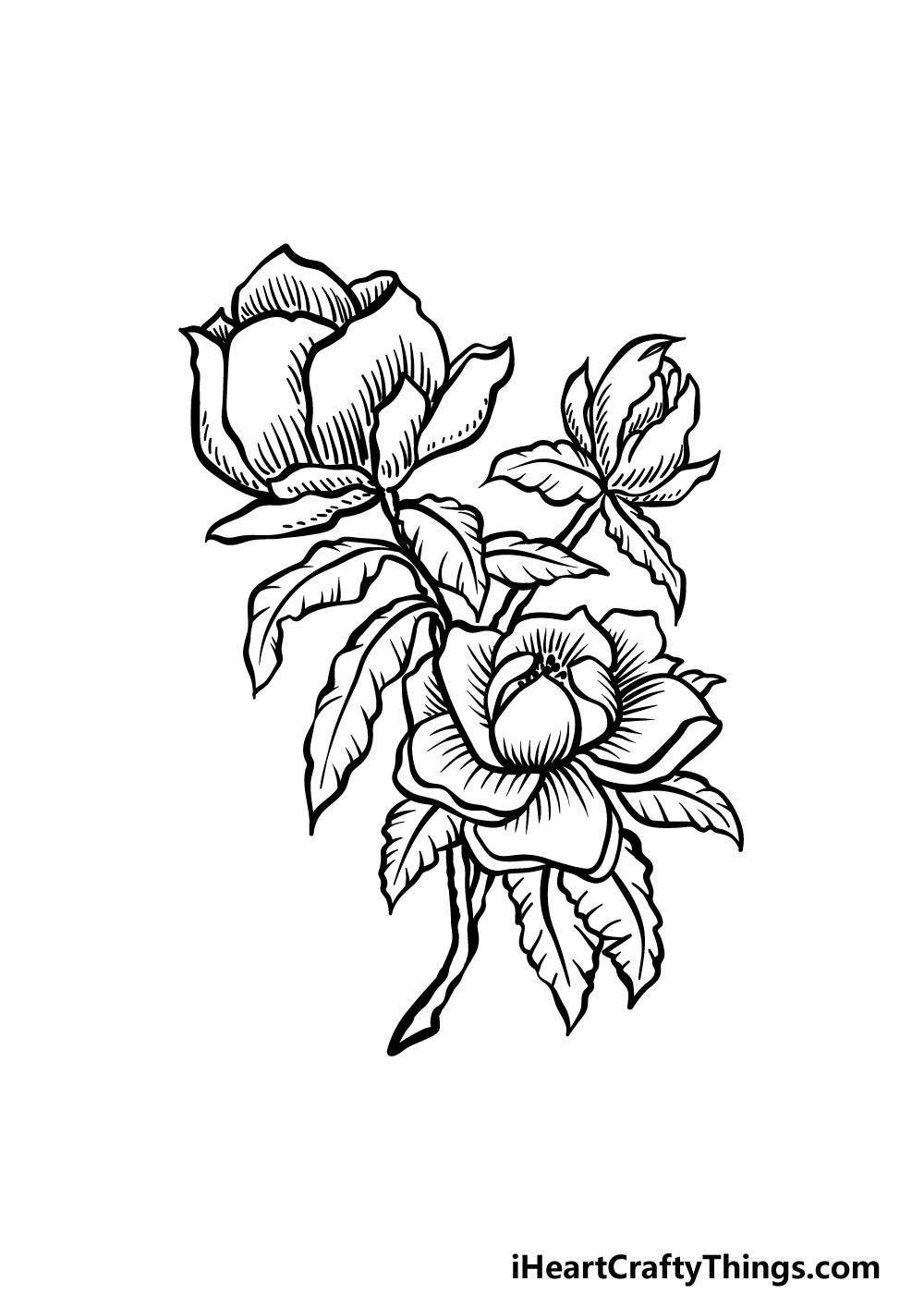 how to draw magnolia flower step 5