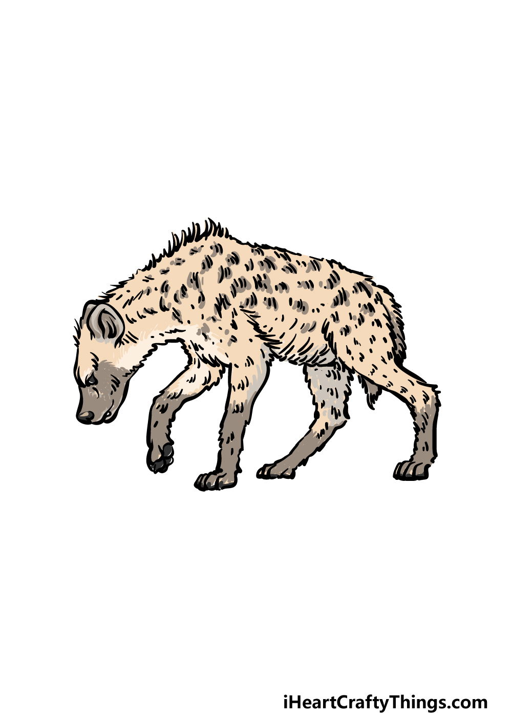 how to draw a hyena step 6