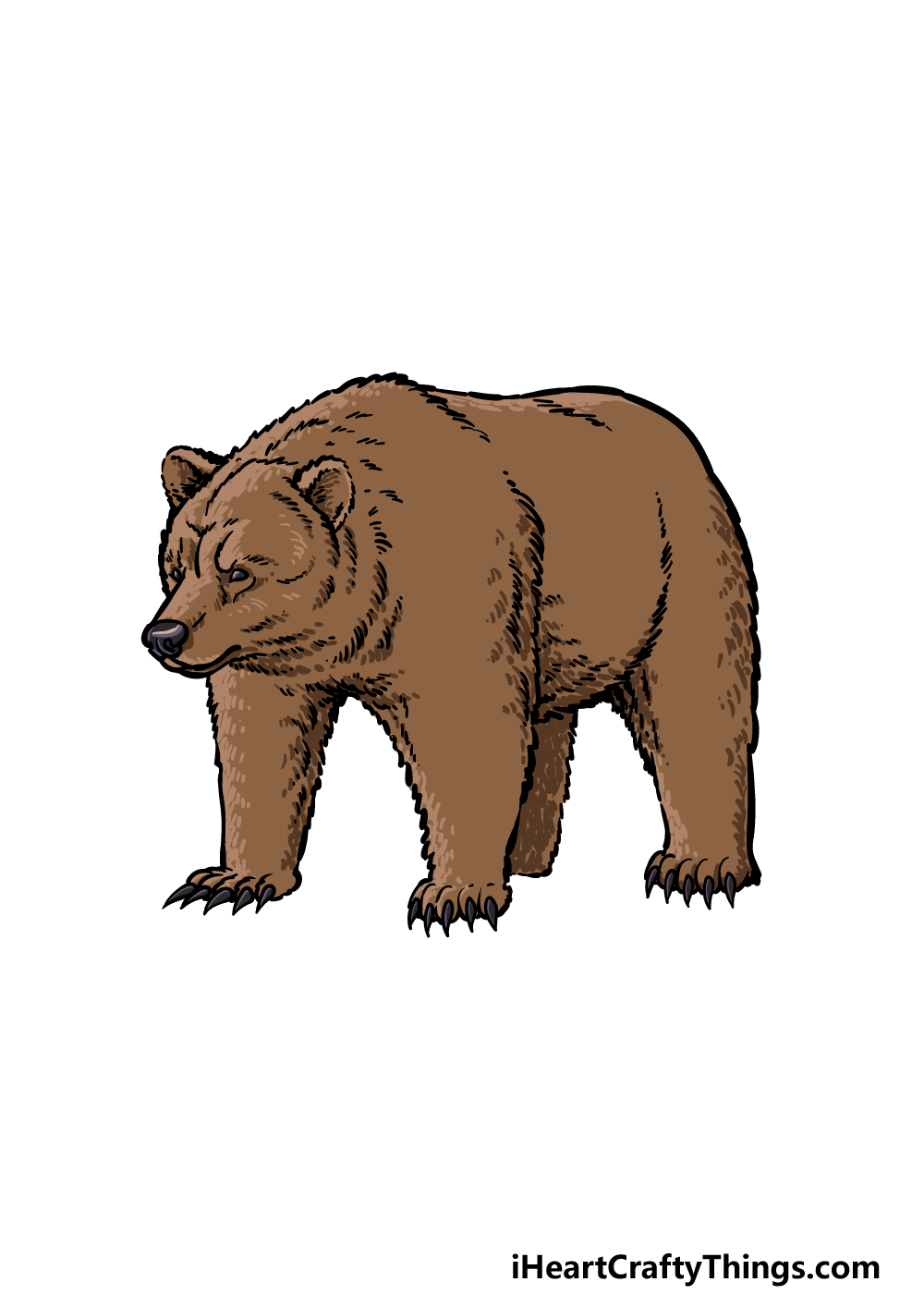 how to draw a grizzly bear step 6