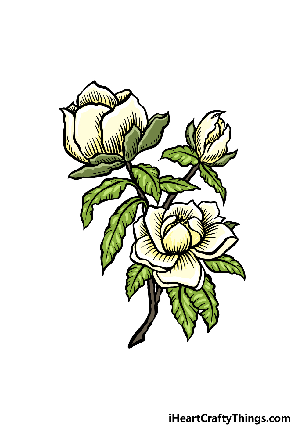 how to draw magnolia flower step 6