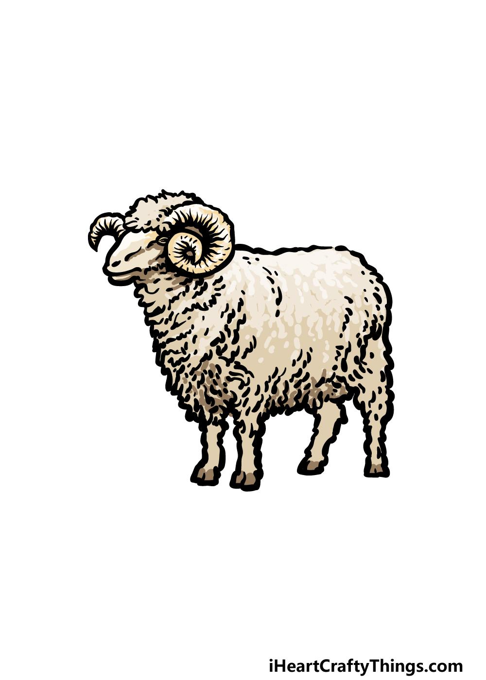 drawing a ram step 6