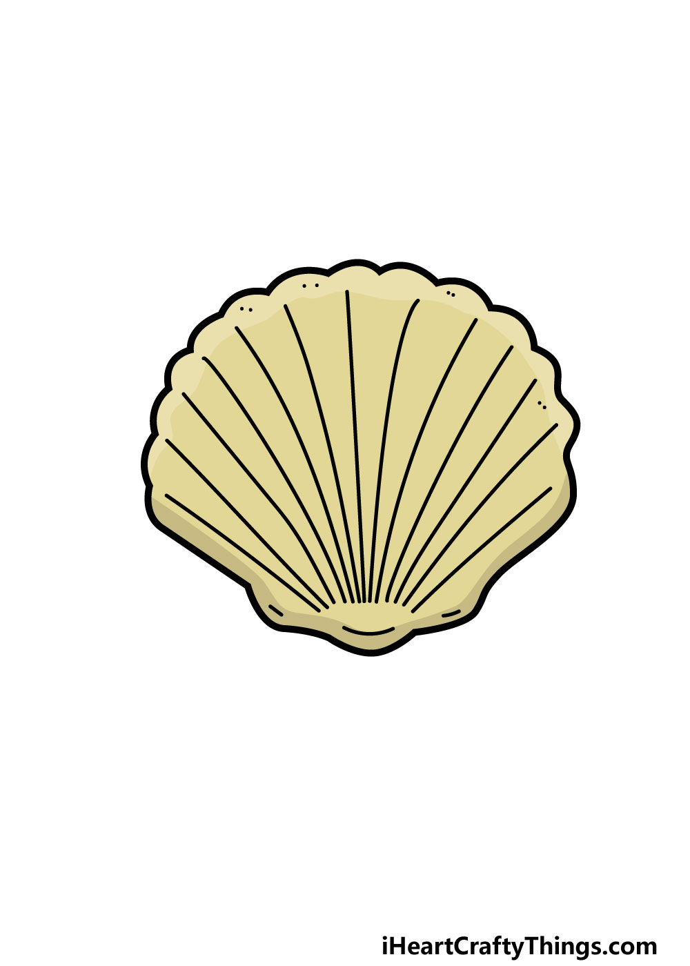 drawing a shell step 7