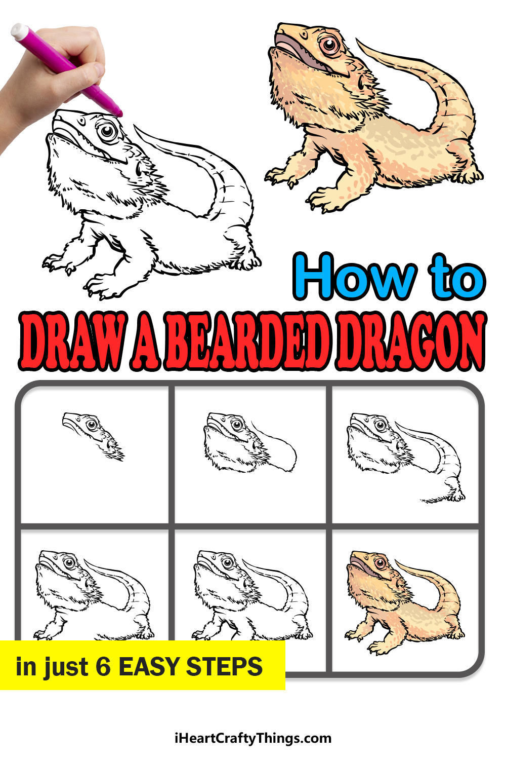 how to draw a bearded dragon in 6 easy steps