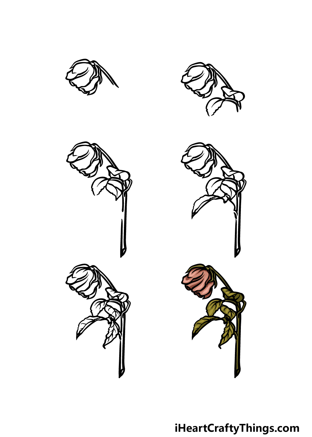 how to draw a dead rose in 6 steps