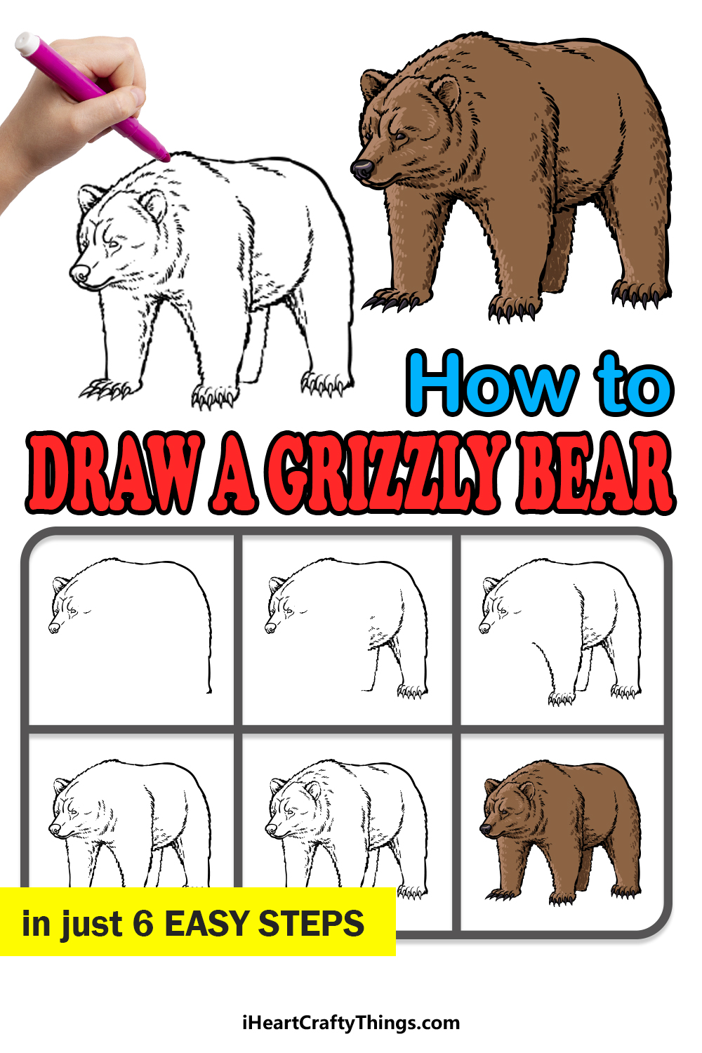 how to draw a grizzly bear in 6 easy steps
