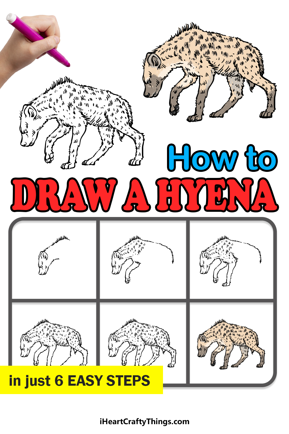 how to draw a hyena in 6 easy steps
