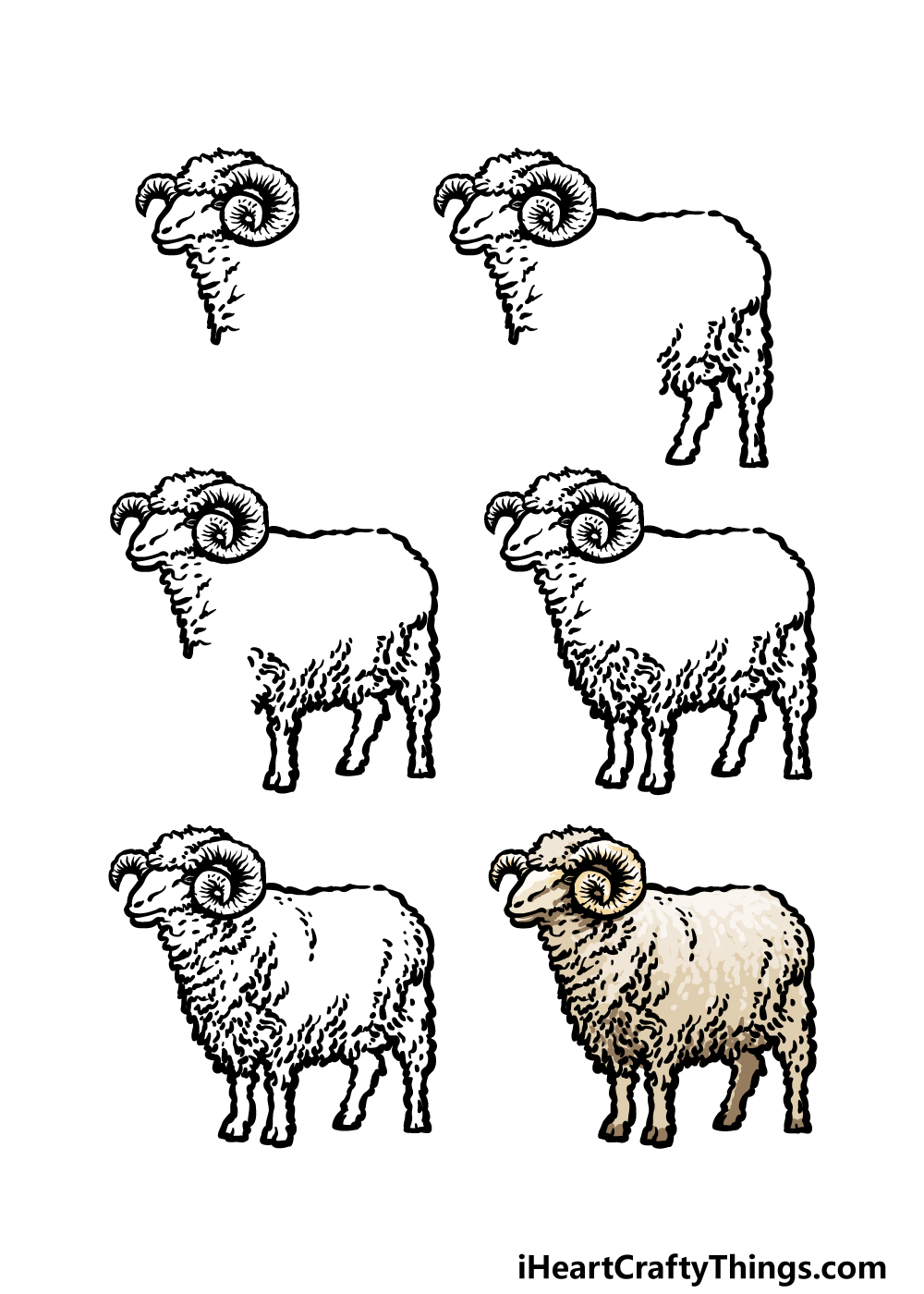how to draw a ram in 6 steps