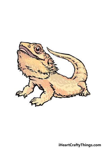 how to draw a bearded dragon image