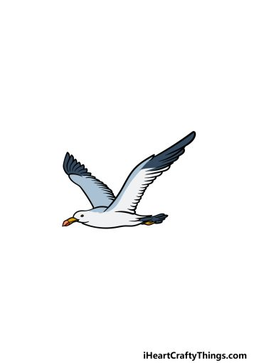 how to draw a Seagull image