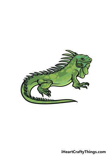 how to draw an Iguana image