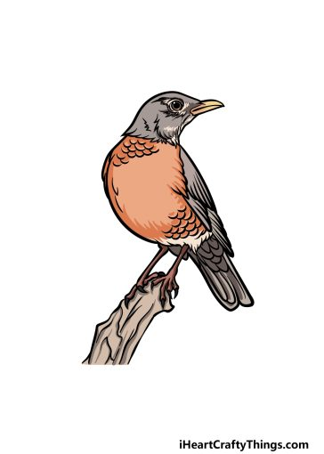 how to draw a Robin image