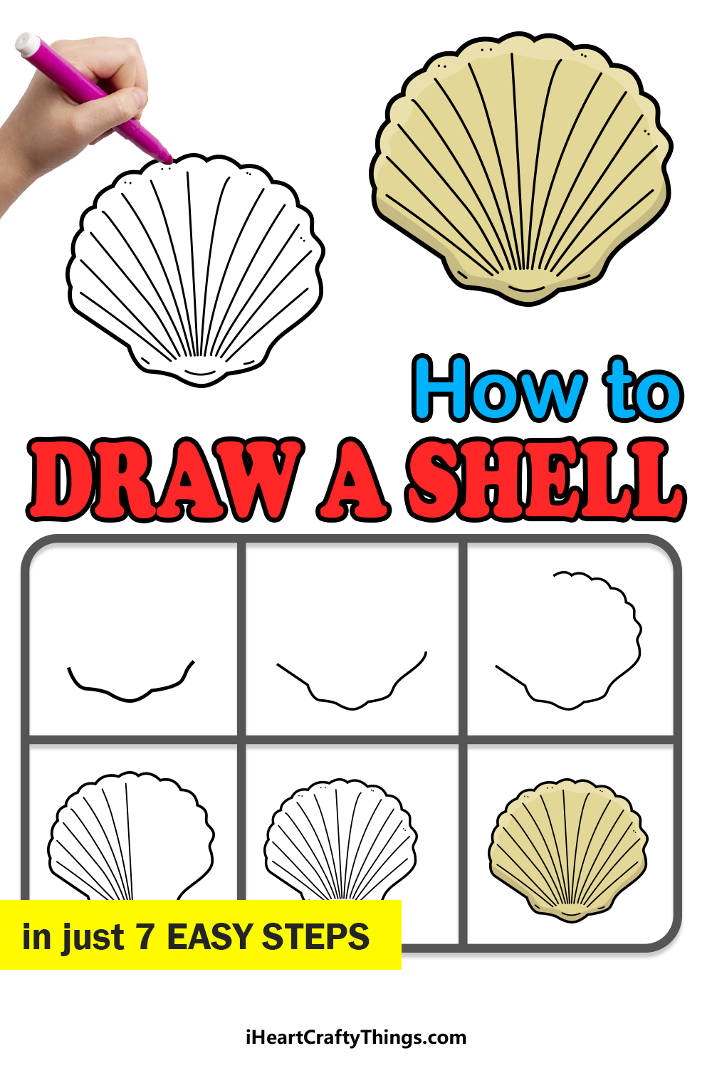 how to draw a shell in 7 easy steps