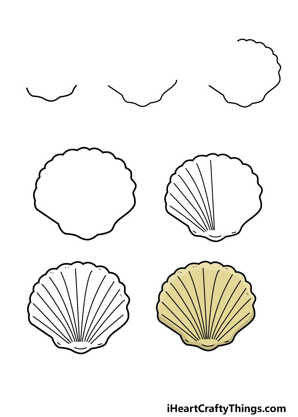 how to draw a shell in 7 steps