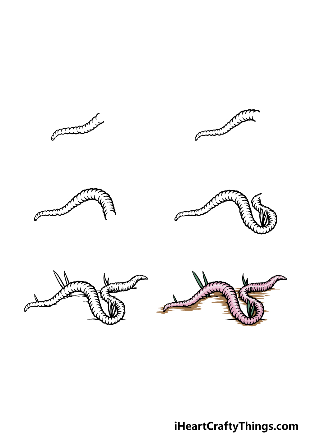 how to draw a worm in 6 steps