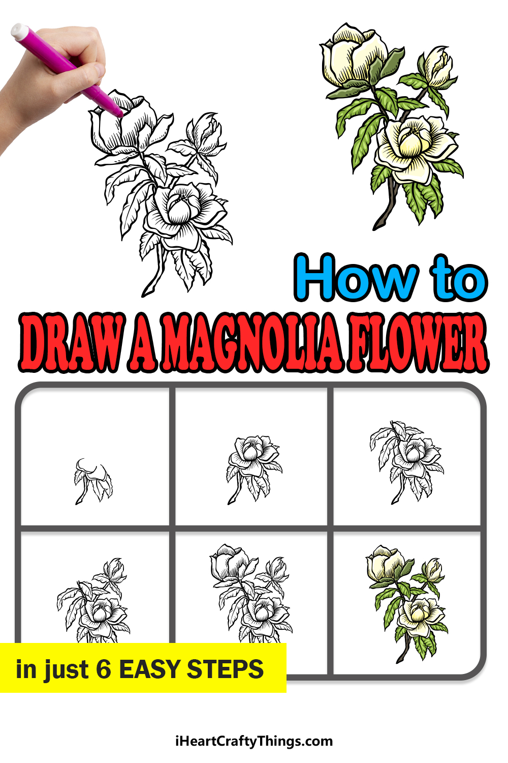 how to draw magnolia flower in 6 easy steps